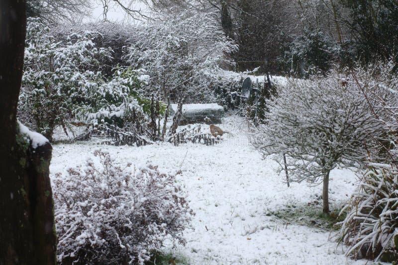 Escena de la nieve de Suffolk imagenes de archivo