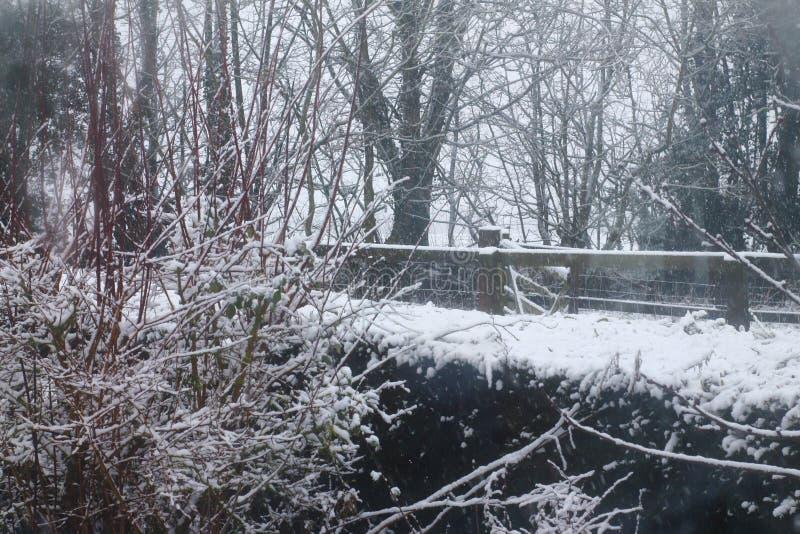 Escena de la nieve de Suffolk imágenes de archivo libres de regalías