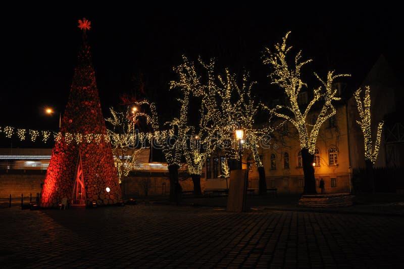 Escena de la noche de la ciudad del invierno de la Navidad con los árboles encendidos foto de archivo libre de regalías