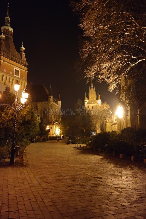 Escena de la noche del castillo 2, Budapest, Hungría de Vajdahunyad foto de archivo libre de regalías