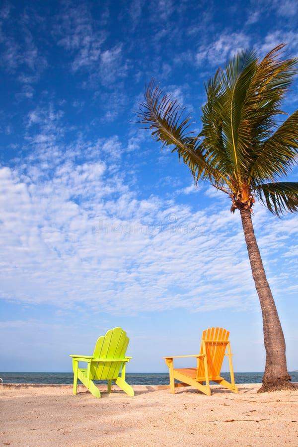 Escena de la playa del verano con las palmeras y los sillones fotografía de archivo
