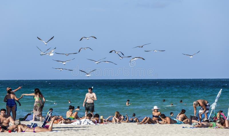 Escena de la playa a finales del día La gente todavía goza del sol de la última hora de la tarde foto de archivo libre de regalías