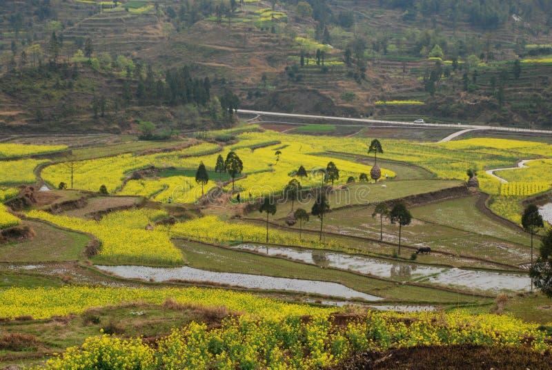 Escena de la terraza en China fotografía de archivo