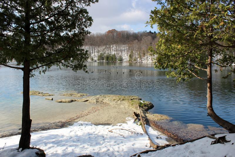 Escena del agua azulverde clara del lago con los árboles, la hierba ornamental, y la nieve recientemente caida a lo largo de los  imagen de archivo
