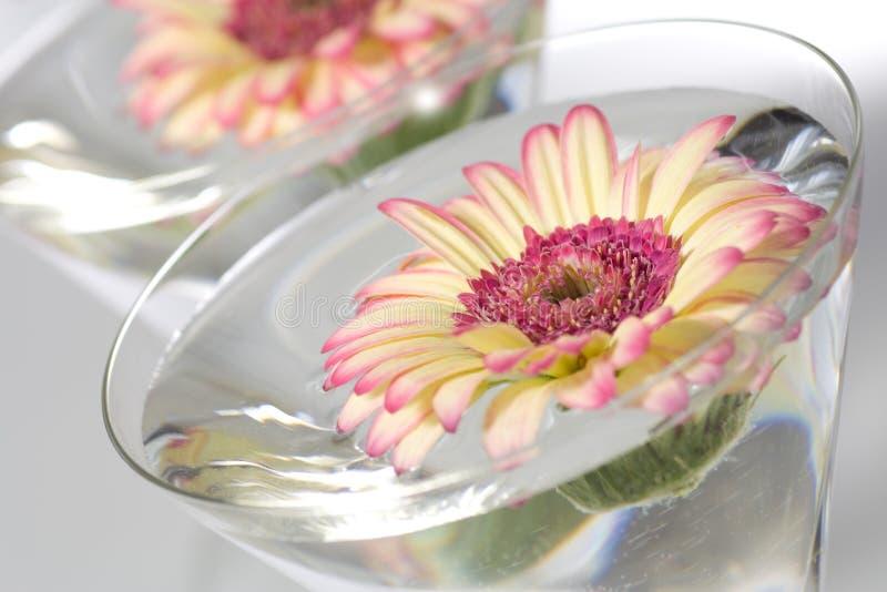 Escena del balneario con las flores foto de archivo libre de regalías