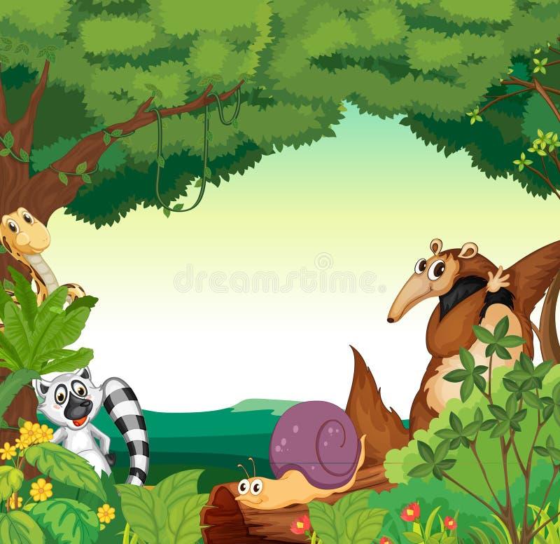 Escena del bosque stock de ilustración