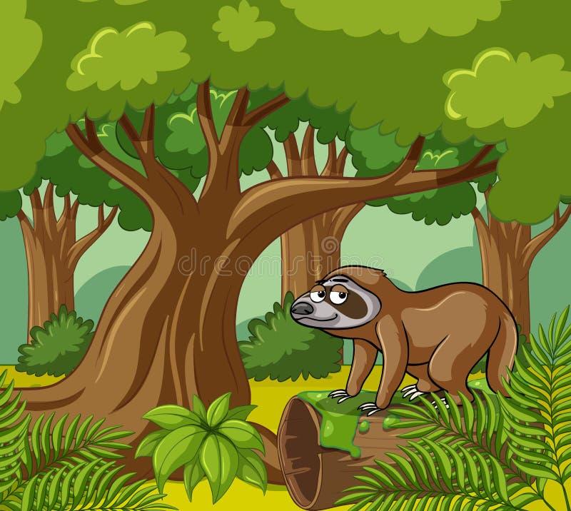 Escena del bosque con pereza en el registro ilustración del vector