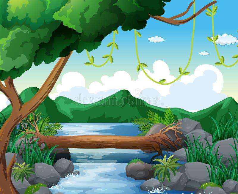 Escena del fondo con el río en bosque libre illustration