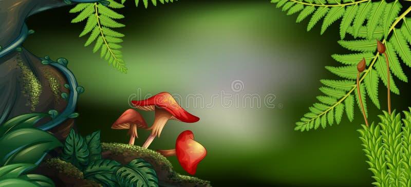 Escena del fondo con las setas en bosque libre illustration