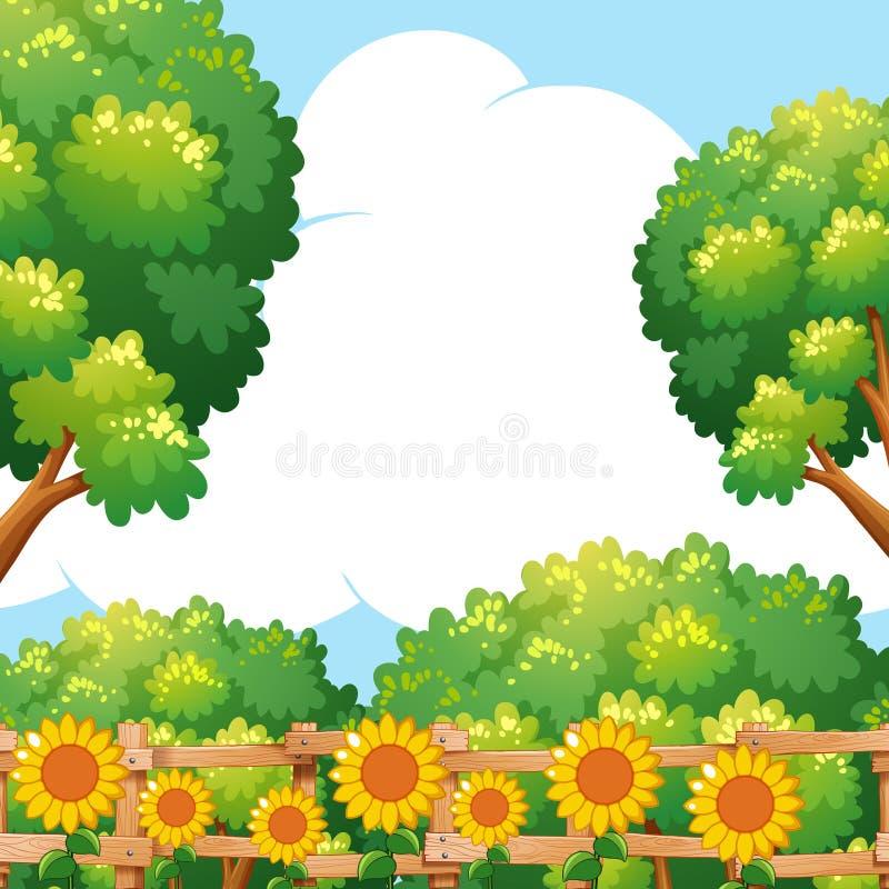 Escena del fondo con los girasoles en jardín ilustración del vector