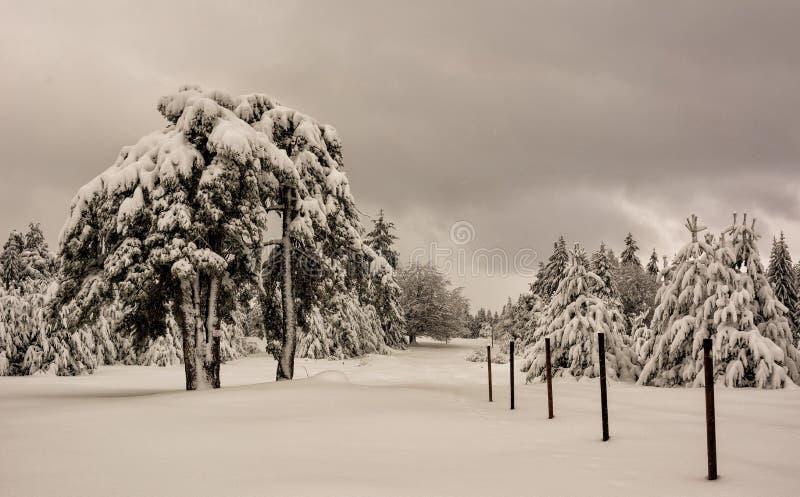 Escena del invierno, Bulgaria fotos de archivo