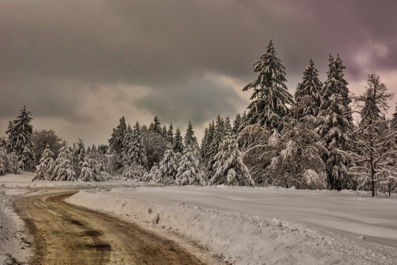 Escena del invierno, Bulgaria fotografía de archivo