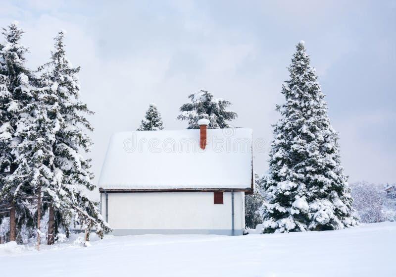 Escena del invierno, casa rural y árboles de pino de la nieve imagenes de archivo