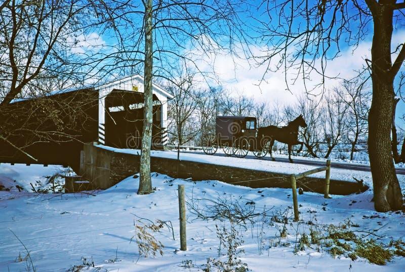 Escena del invierno con el cochecillo de Amish imagen de archivo