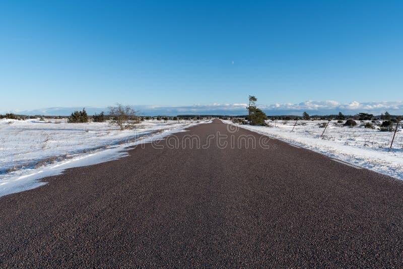 Escena del invierno de un camino recto a través de un gran landscap llano fotografía de archivo libre de regalías