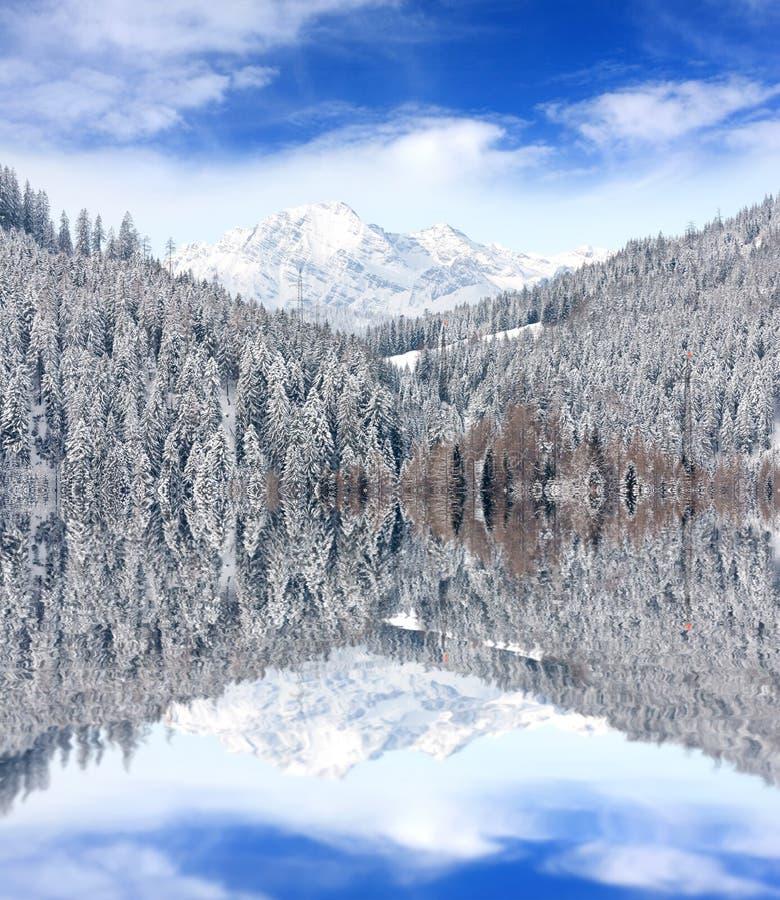 Escena del invierno en montañas foto de archivo libre de regalías
