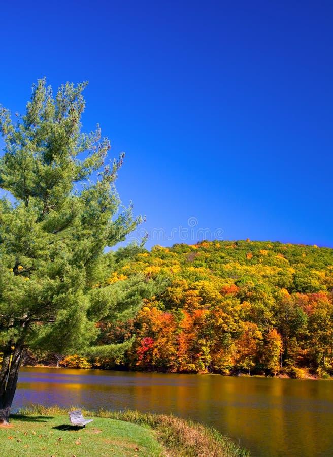 Escena del lago autumn fotografía de archivo