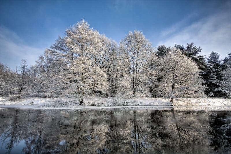 Escena del lago en invierno fotografía de archivo
