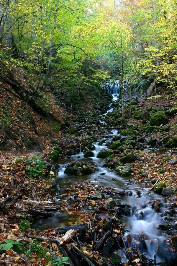 Escena del otoño fotografía de archivo