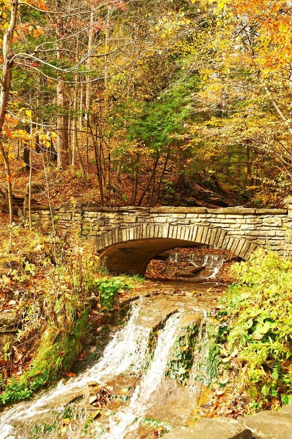 Escena del otoño de la cascada imagen de archivo libre de regalías