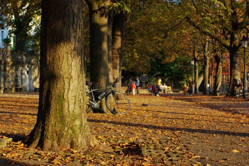 Escena del otoño en ciudad fotografía de archivo
