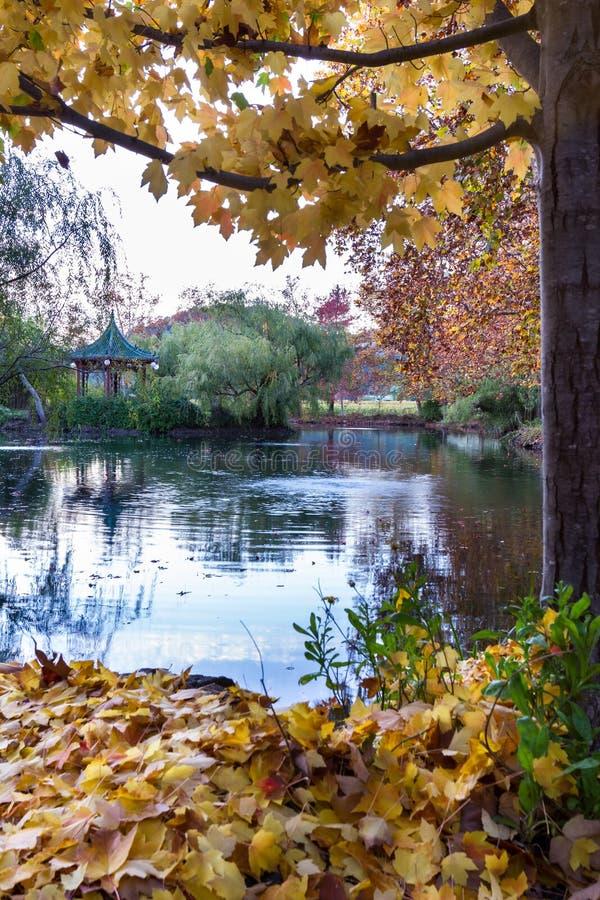 Escena del otoño que calma fotos de archivo libres de regalías