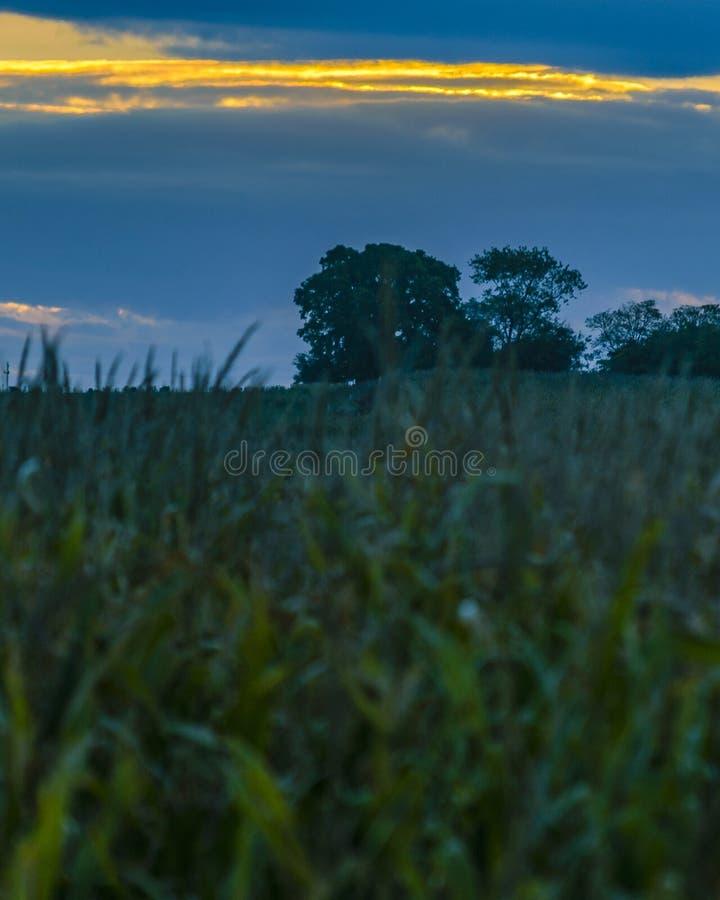 Escena del prado de la puesta del sol, San Jose, Uruguay imágenes de archivo libres de regalías