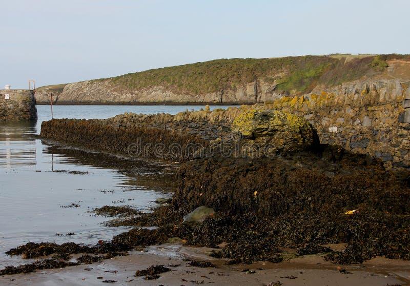Escena del puerto, bahía de Cemeas, Anglesey foto de archivo libre de regalías