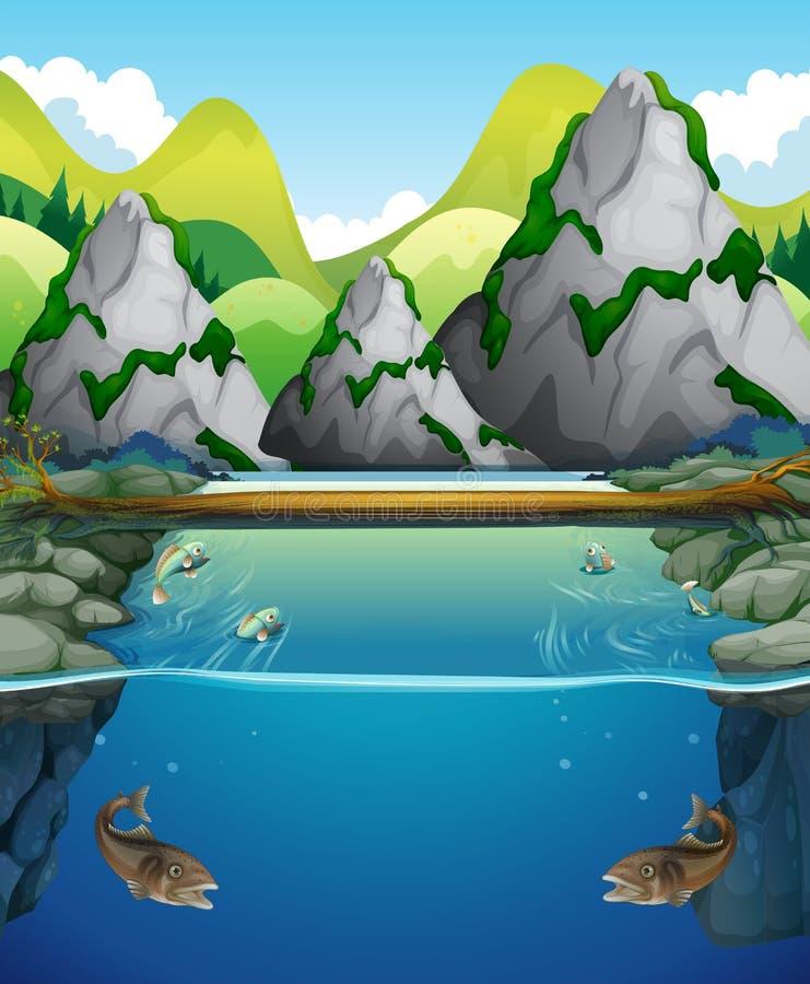 Escena del río con los pescados y la montaña ilustración del vector