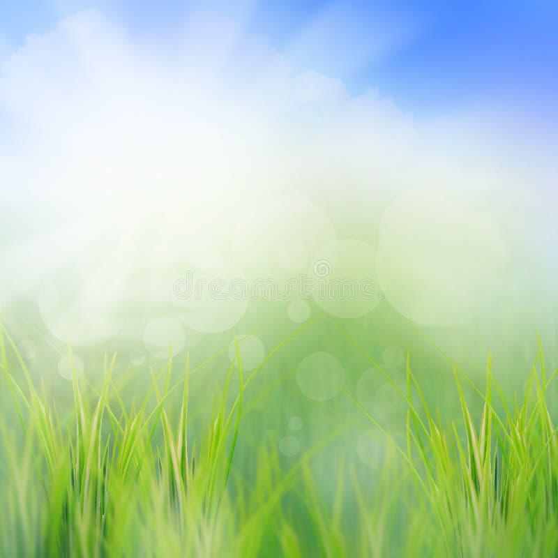 Escena del sol que se levanta por la mañana de la estación de verano nosotros imagen de archivo