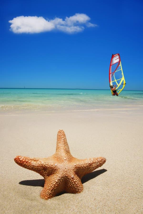 Escena del verano de la playa