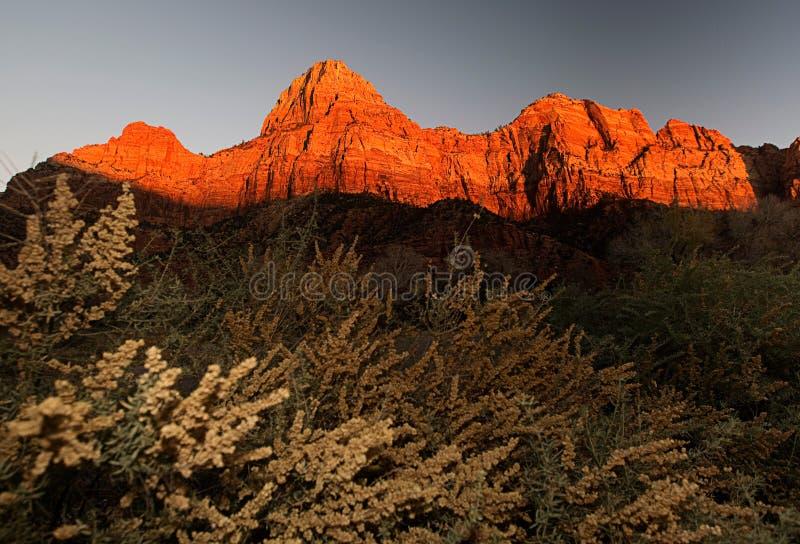 Escena en el parque nacional de zion en la puesta del sol fotografía de archivo