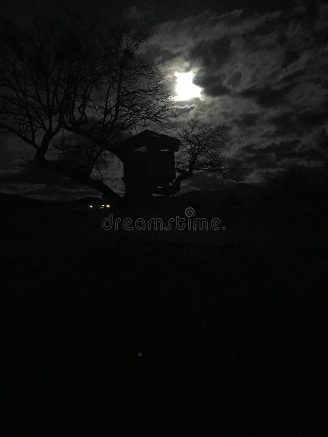 Escena fantasmagórica con la Luna Llena y la casa en el árbol frecuentada imagen de archivo