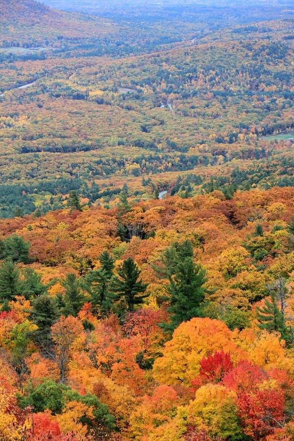 Escena hermosa de los colores de la caída encima de la montaña imagen de archivo libre de regalías