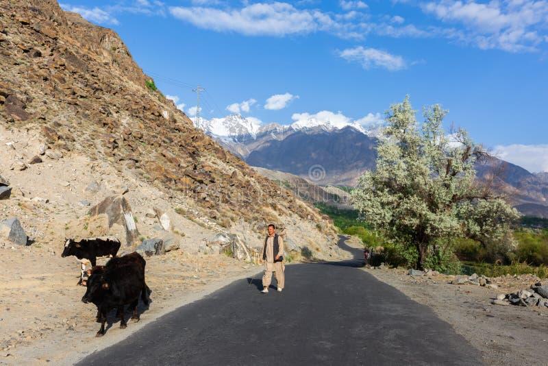 Escena hermosa del otoño a lo largo de la carretera de Karakorum imagen de archivo libre de regalías