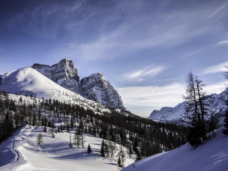 Escena mágica del invierno, dolomías, Italia imágenes de archivo libres de regalías