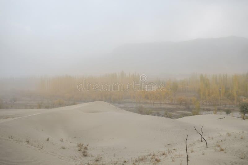 Escena nublada y polvorienta antes de la tormenta en el desierto de Katpana, Skardu paquist?n imagenes de archivo