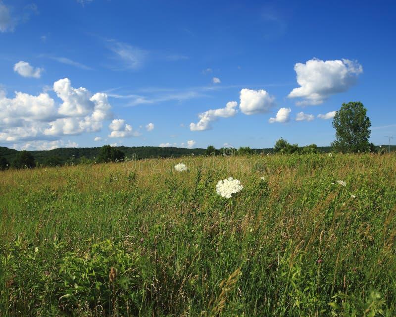 Escena pastoral rural de Missouri foto de archivo