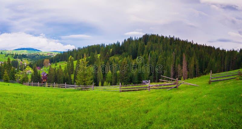 Escena pintoresca de Cárpatos de la primavera con la cerca de carril partido de madera a través de un verde y de un pasto enorme, foto de archivo