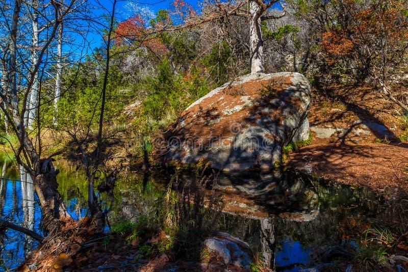 Escena pintoresca de la naturaleza de un granito grande Boulder rodeado por los árboles de Cypress calvo grandes en Hamilton Creek imágenes de archivo libres de regalías