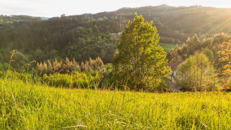 Escena rural fotos de archivo libres de regalías