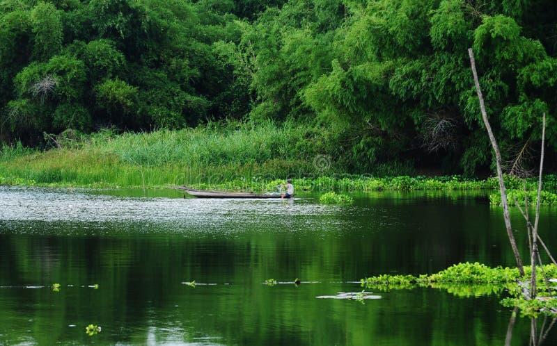 Escena rural con el lago verde en Vinhlong, Vietnam imagenes de archivo