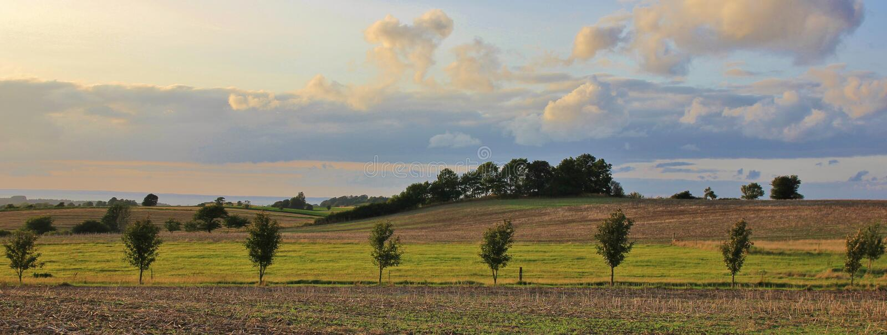 Escena rural del verano en Dinamarca fotografía de archivo libre de regalías