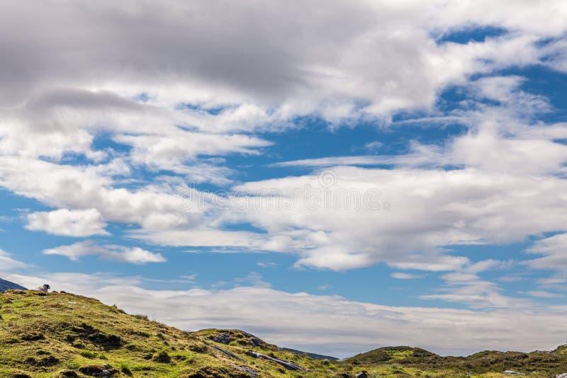 Escena rural Harris, islas occidentales, Escocia fotografía de archivo libre de regalías