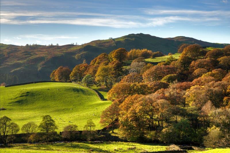 Escena rural inglesa con colores del otoño imagen de archivo