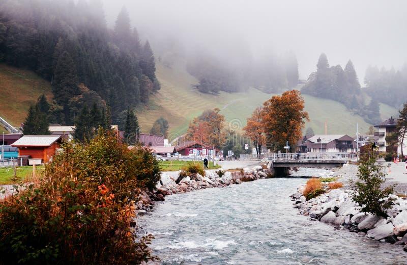 Escena rural suiza con la corriente y el árbol del otoño en Engelberg, Suiza imagen de archivo libre de regalías