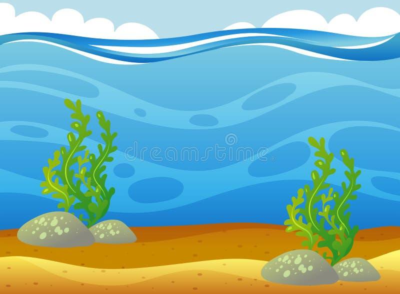 Escena subacuática con algas marinas stock de ilustración
