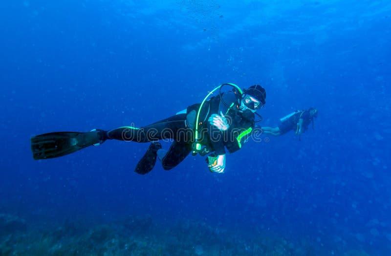 Escena subacuática con el buceador congelado que lleva a cabo una cáscara fotografía de archivo libre de regalías