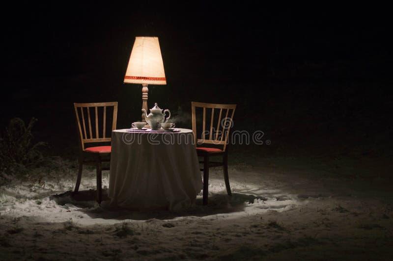 Escena surrealista fuera del invernadero - comensal con un sistema del servicio de té de la porcelana imagen de archivo libre de regalías