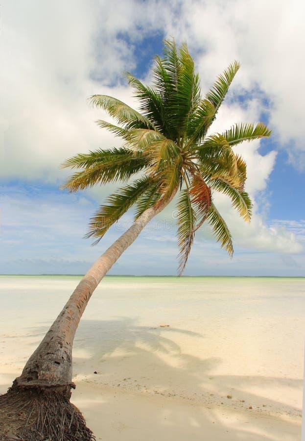 Escena tropical de la playa imágenes de archivo libres de regalías